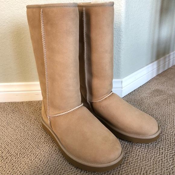 64c411621fe UGG Women's Classic II Tall Boot Wool Blend Boots NWT